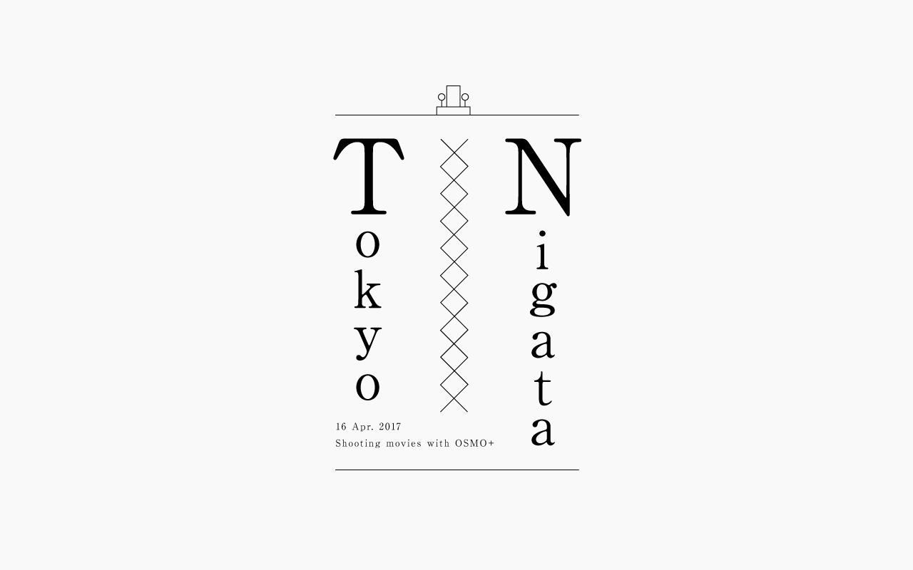 nigata_logo.jpg