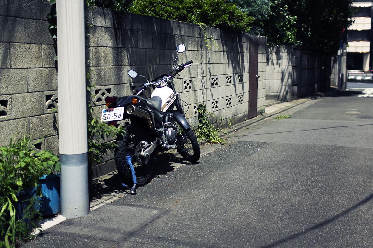 IMG_9556.jpg
